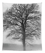 Lonely Winter Tree Tapestry