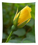 Lonesome Bud Tapestry