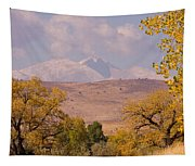 Longs Peak Diamond Autumn Shadow Tapestry