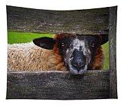 Lookin At Ewe Tapestry