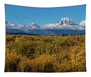 Looking Across Willow Flats To Mt Moran Tapestry
