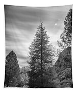 Looking For The Sky Into The Woods Tapestry