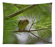 Looking Down - Common Sparrow - Passer Domesticus Tapestry