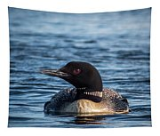 Loon Profile Tapestry