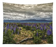 Lost In The Lupine Tapestry
