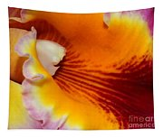 Lotsa Color Tapestry