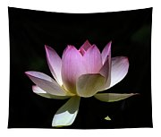 Lotus--purity 24o Tapestry