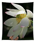 Lotus Under Cover Tapestry