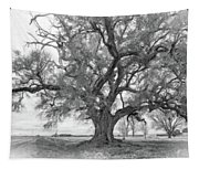 Louisiana Dreamin' Monochrome Tapestry