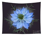 Love In A Mist Black With Light Tapestry