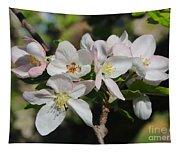Lovely Apple Blossoms Tapestry