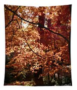 Lovely Autumn Tree Tapestry