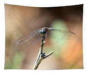 Lovely Dragonfly Tapestry