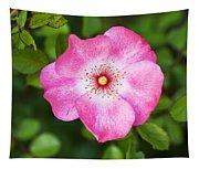 Lovely Pink Rose Tapestry