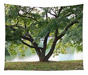 Lovely Tokyo Tree With Pond Tapestry