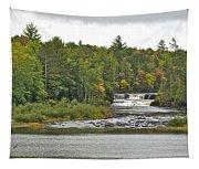 Lower Tahquamenon Falls 4 Tapestry
