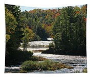 Lower Tahquamenon Falls  4349 Tapestry