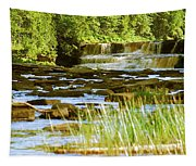 Lower Tahquamenon Falls 6128 Tapestry