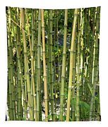 Lucky Bamboo Tapestry