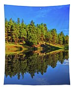 Lunar Reflections Tapestry