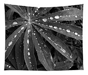 Lupin Leaves With Rain Drops  Tapestry
