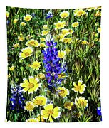 Lupine Amidst Tidy Tips Tapestry