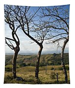 Lush Land Leafless Trees Iv Tapestry