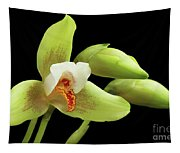 Lycaste Deppei Orchid Tapestry