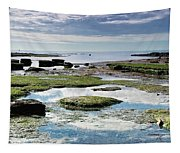 Lyme Regis Seascape 4 - October Tapestry
