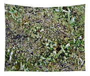 Macro Forest  Tapestry