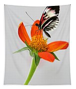 Magical Butterfly Tapestry