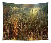 Magical Light On The Marsh Tapestry
