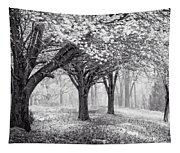 Magical Meadow  Tapestry