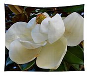 Magnolia Bloom Tapestry