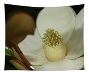 Magnolia Blossom Tapestry