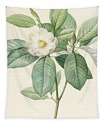 Magnolia Glauca Tapestry
