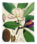 Magnolia Hodgsonii Tapestry