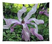 Magnolia Soulangeana Tapestry