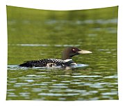 Maine Loon 5 Tapestry