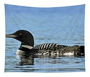 Maine Loon Tapestry