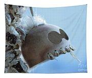Makakii Ikaika Makani Tapestry