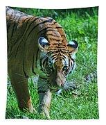 Malayan Tiger # 2 Tapestry