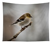 Male American Golden Finch Tapestry