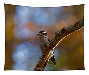 Male Downy Woodpecker Tapestry