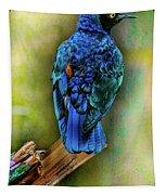 Male Fairy Bluebird Tapestry