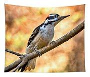 Male Hairy Woodpecker Tapestry