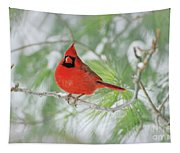 Male Northern Cardinal In Winter Tapestry