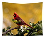 Male Northern Red Cardinal Tapestry