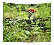 Male Pileated Woodpecker On The Ground No. 2 Tapestry
