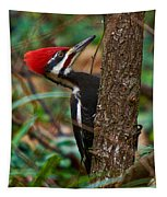 Male Pileated Woodpecker Tapestry